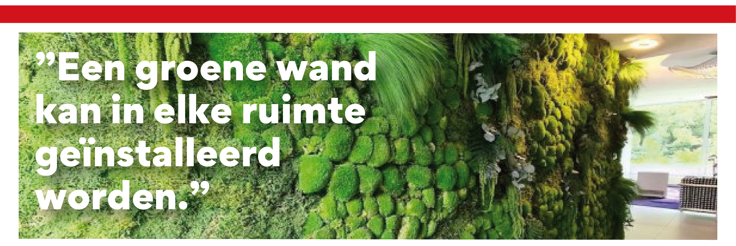 https://alternativ.nl/wp-content/uploads/2020/09/Groene-wand-website-2.png